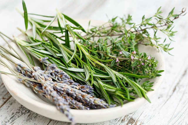 plantes aromatiques, thym, lavande, origan, romarin